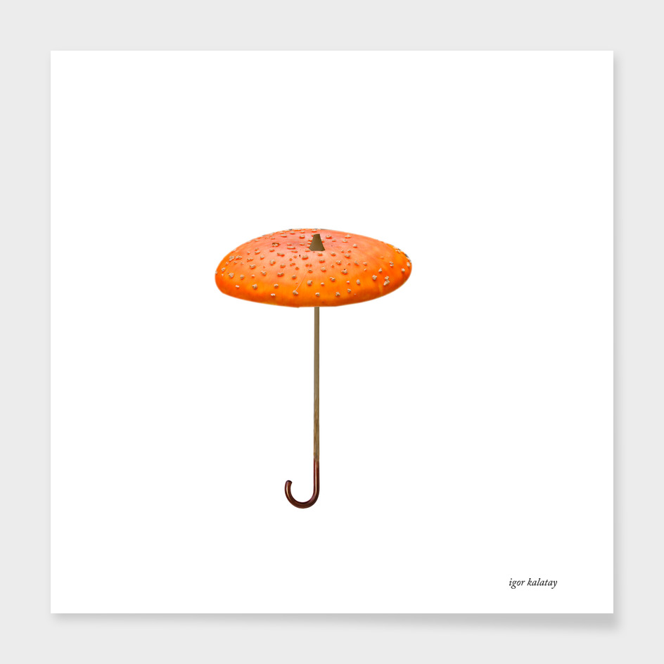 Mushroom - umbrella