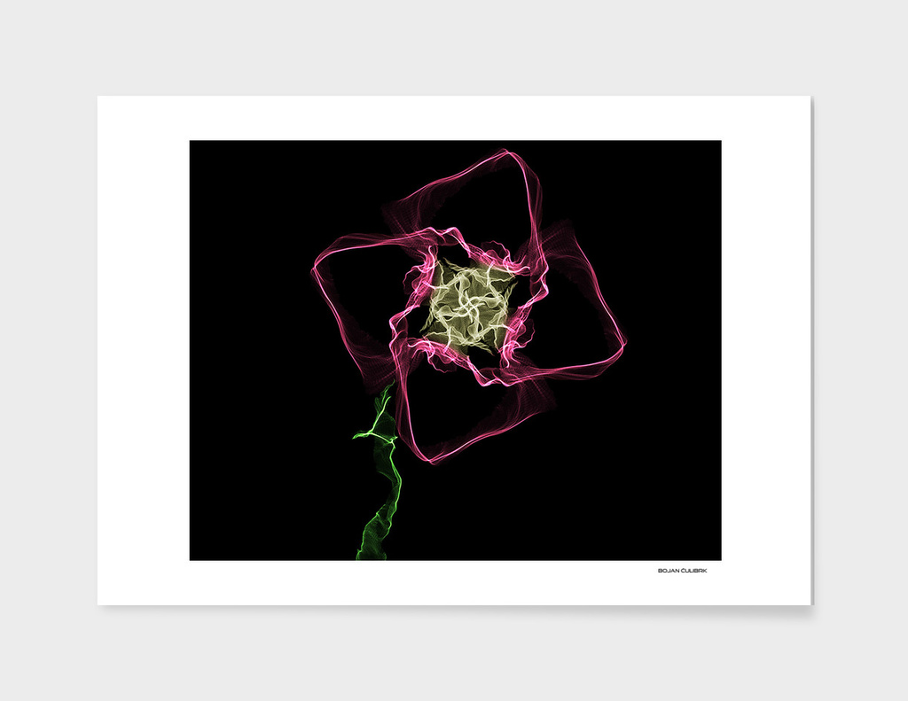 Abstract Flower 3rd Edition
