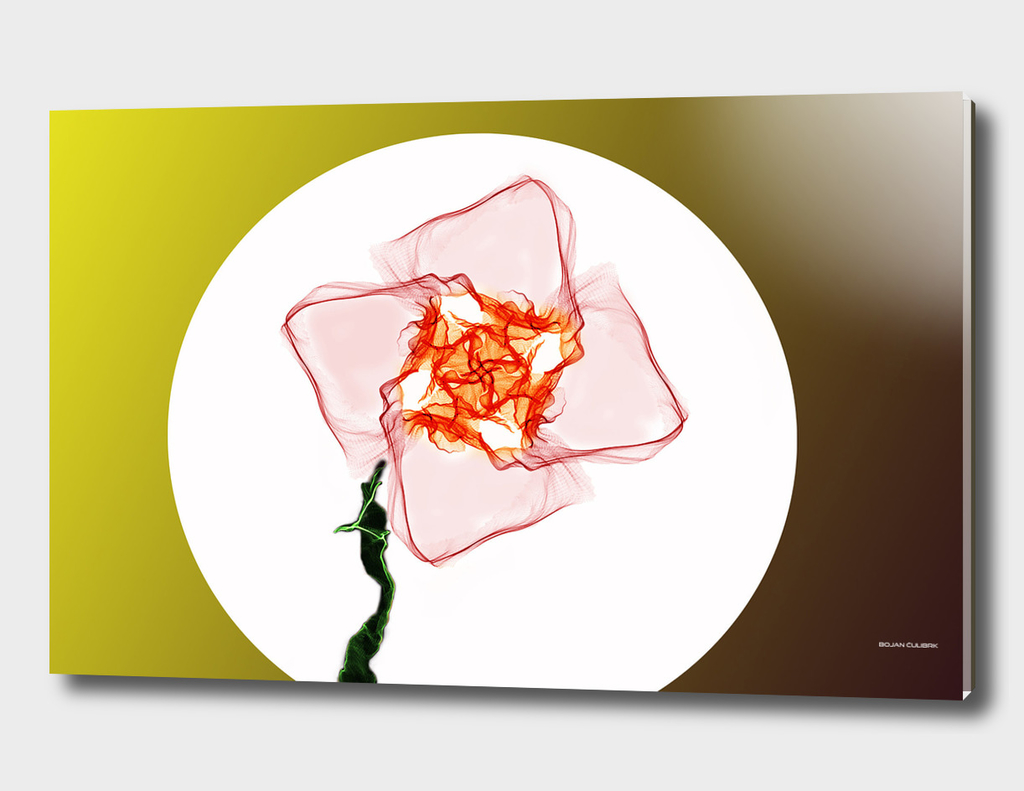 Abstract Flower 4th Edition