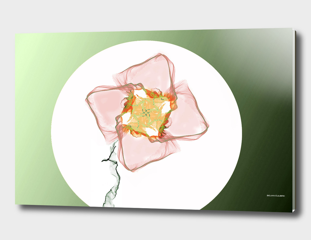 Abstract Flower 5th Edition