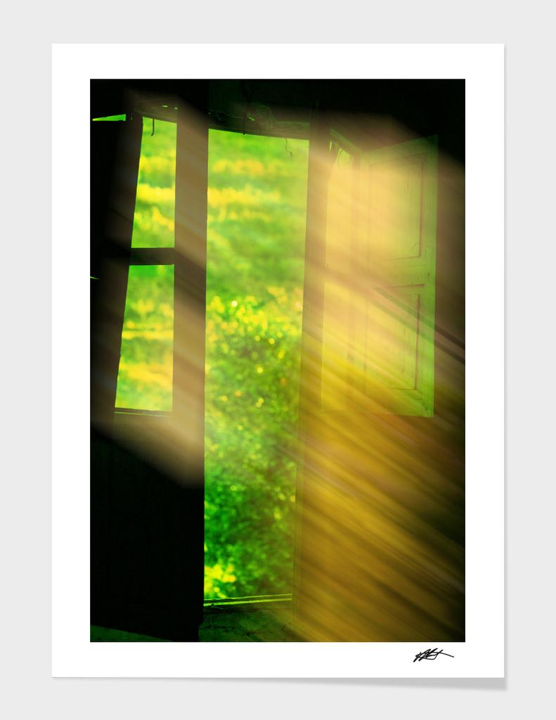 Window of dreams