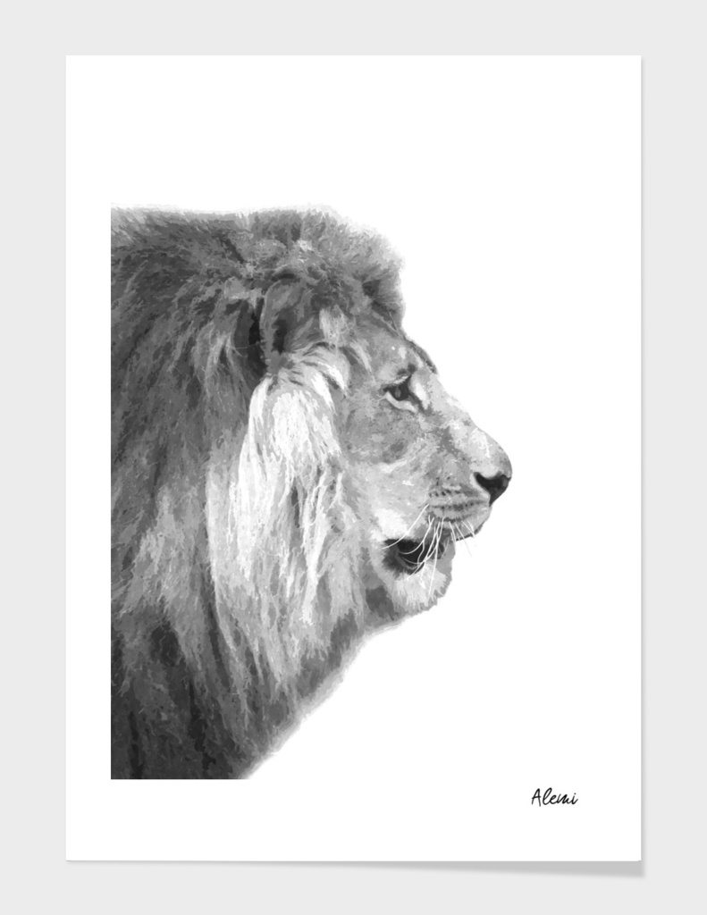 Black and White Lion Profile