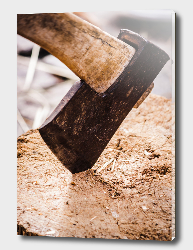Axe in the wood