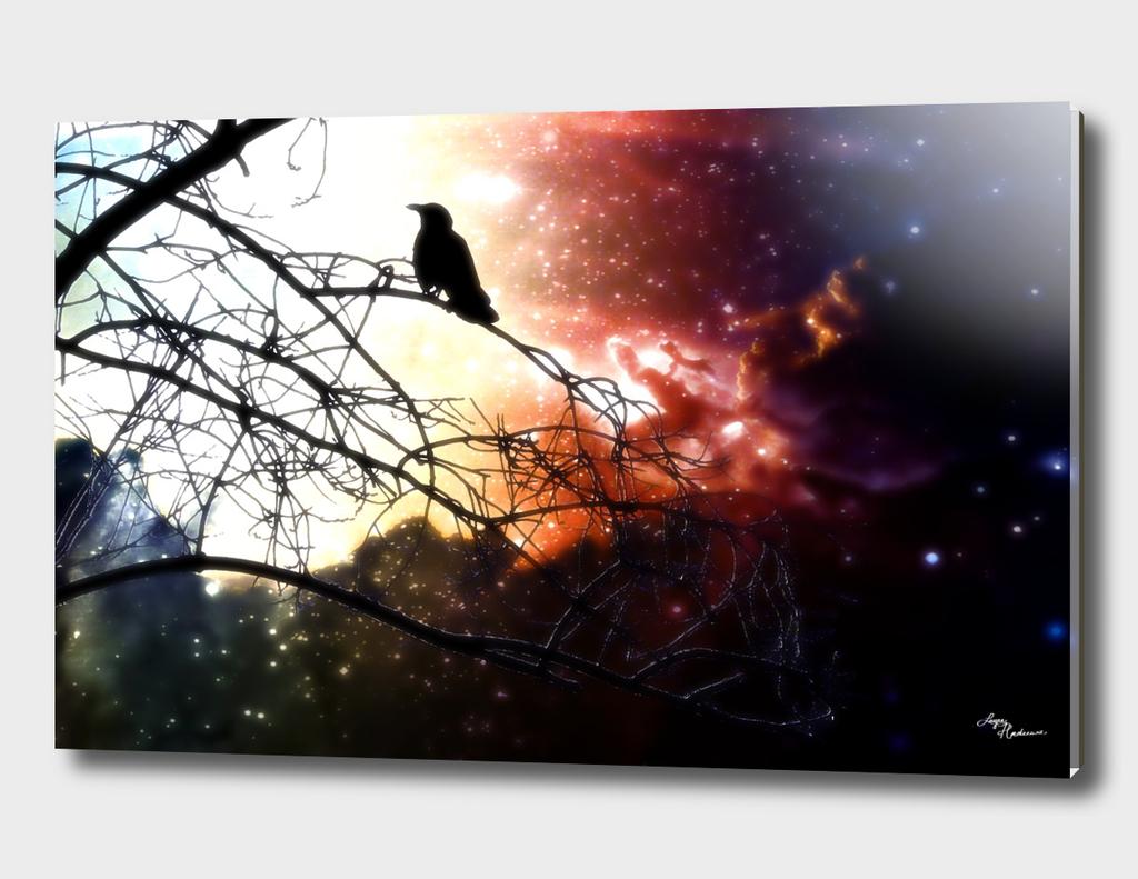 Cosmic Blackbird