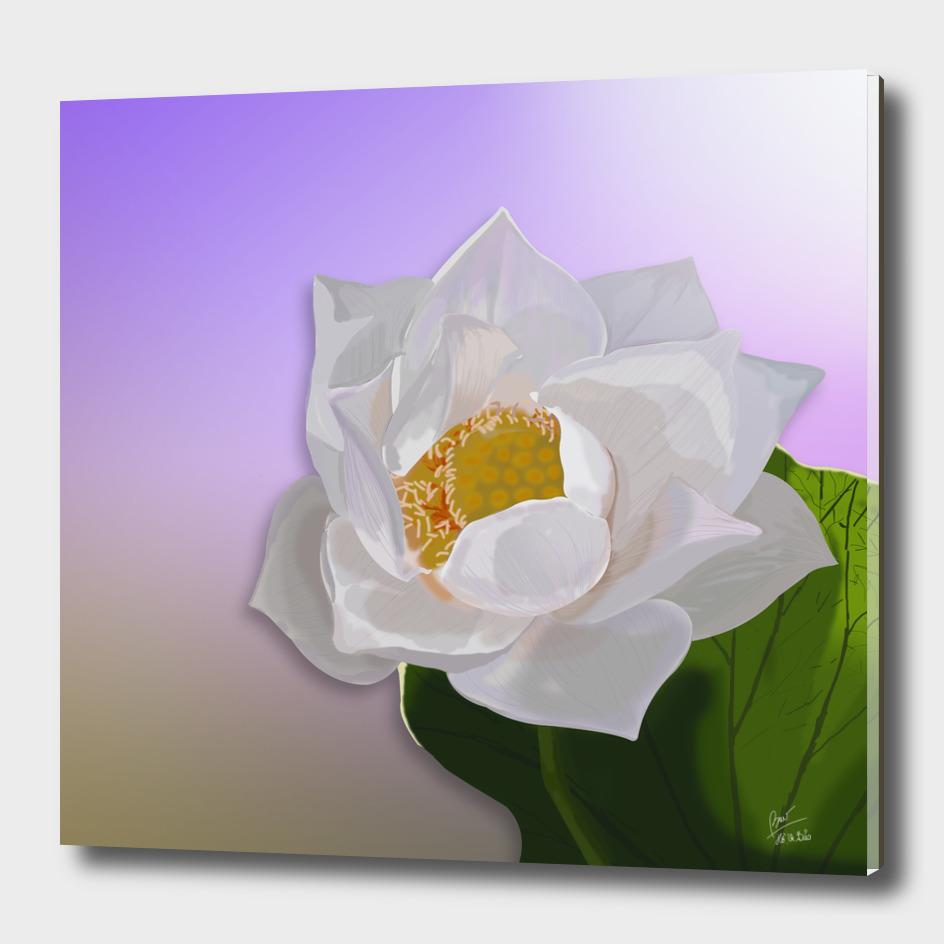 The spirit of the lotus