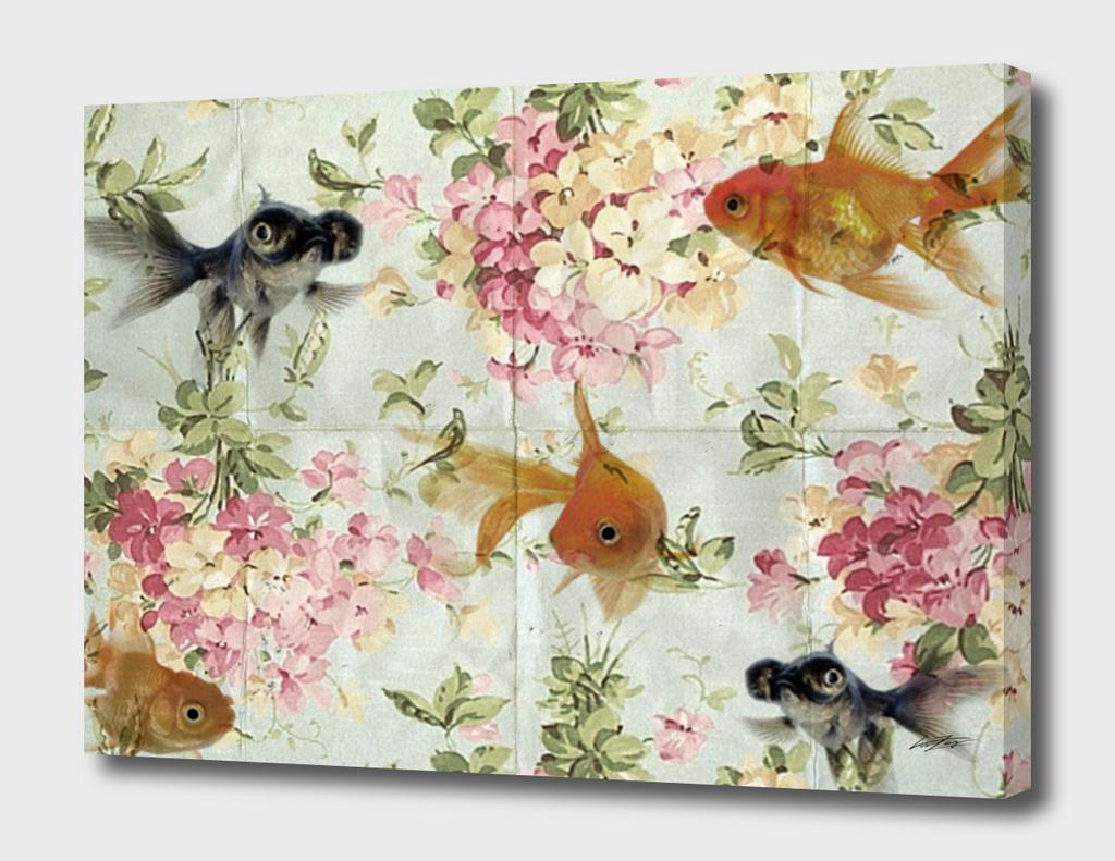 glod fish wall paper