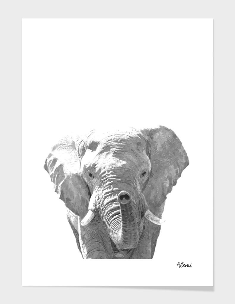 Black and White Elephant Illustration