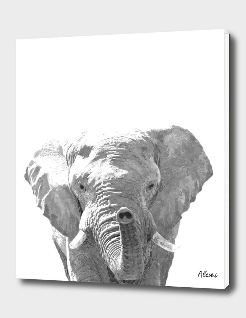 Black and White Elephant Illustration