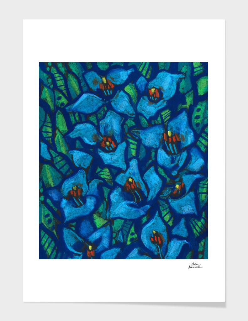 The Blue Puya