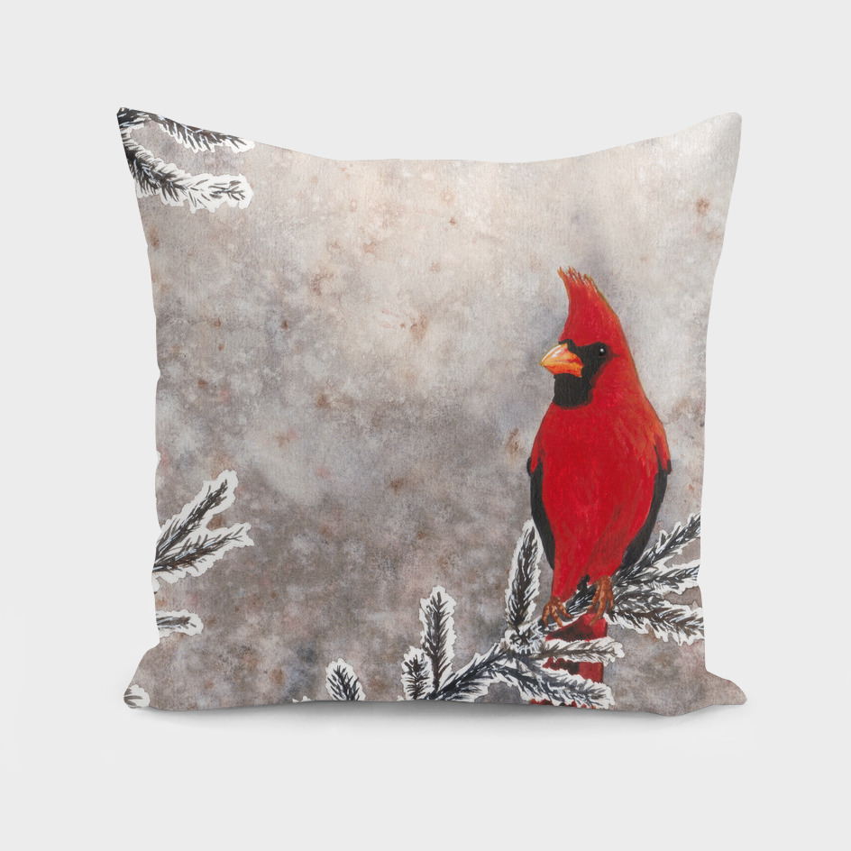 The red cardinal in winter