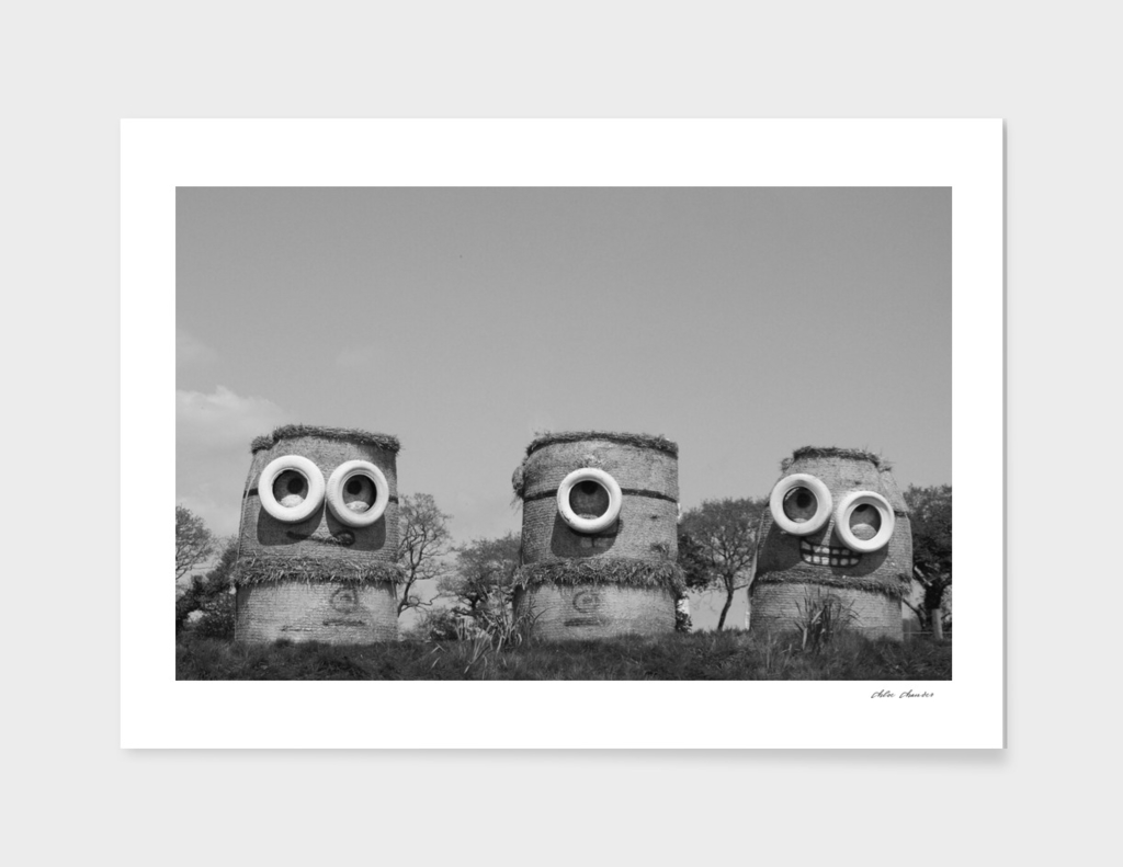 Minion Photography Print