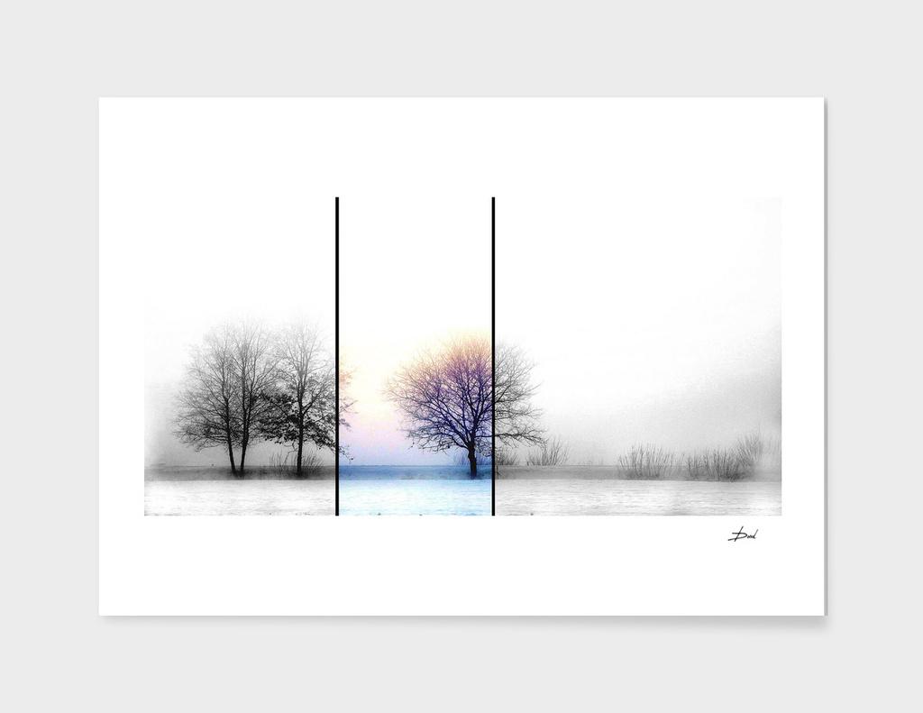 New Winter Landscape