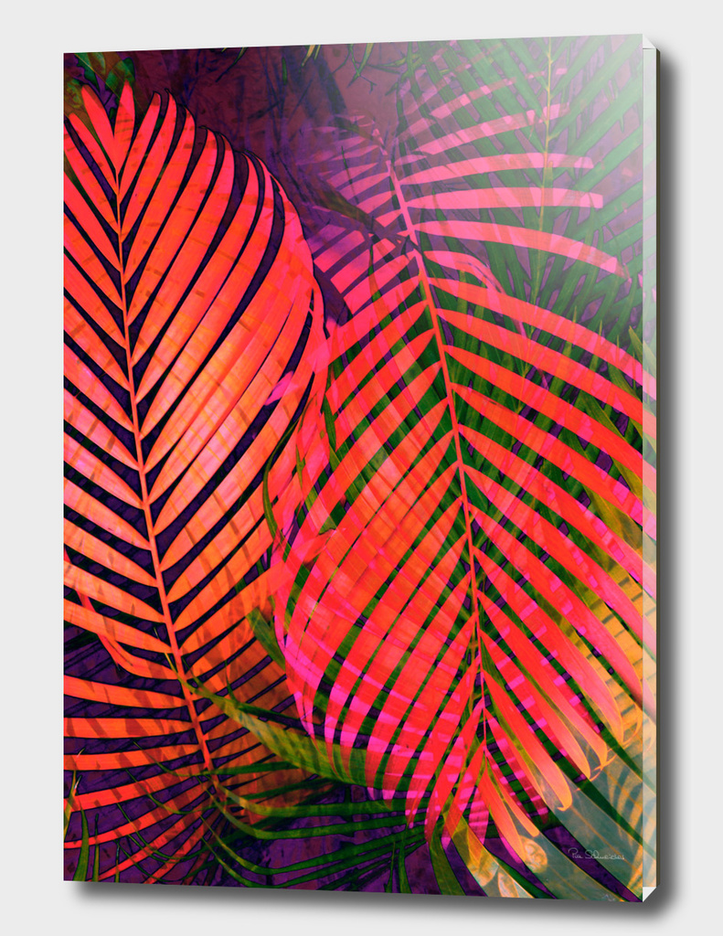 COLORFUL TROPICAL LEAVES no2