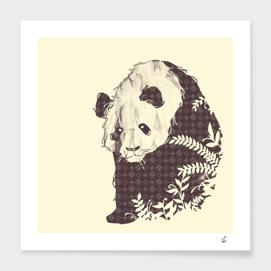 Brand New Panda