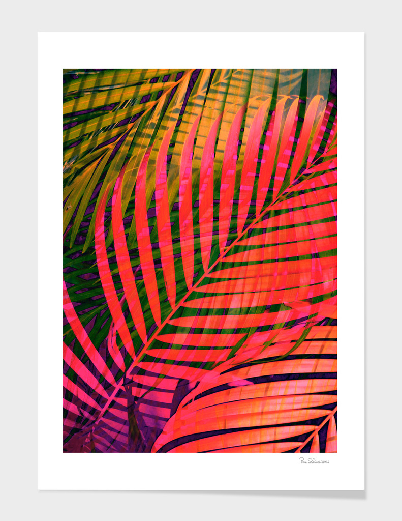 COLORFUL TROPICAL LEAVES no4