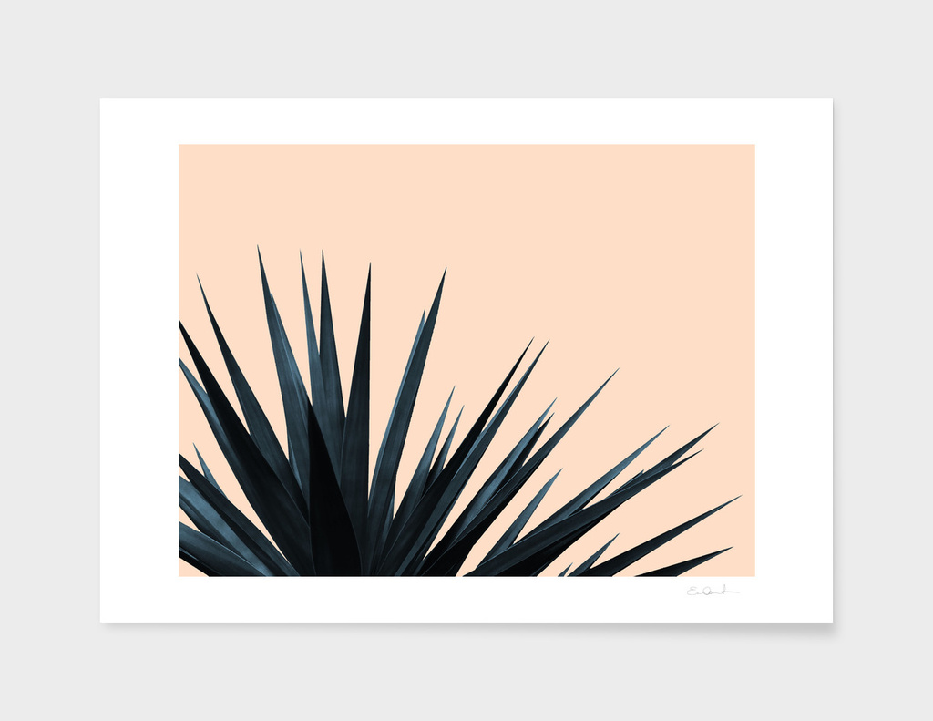 Palms on Pale Pink