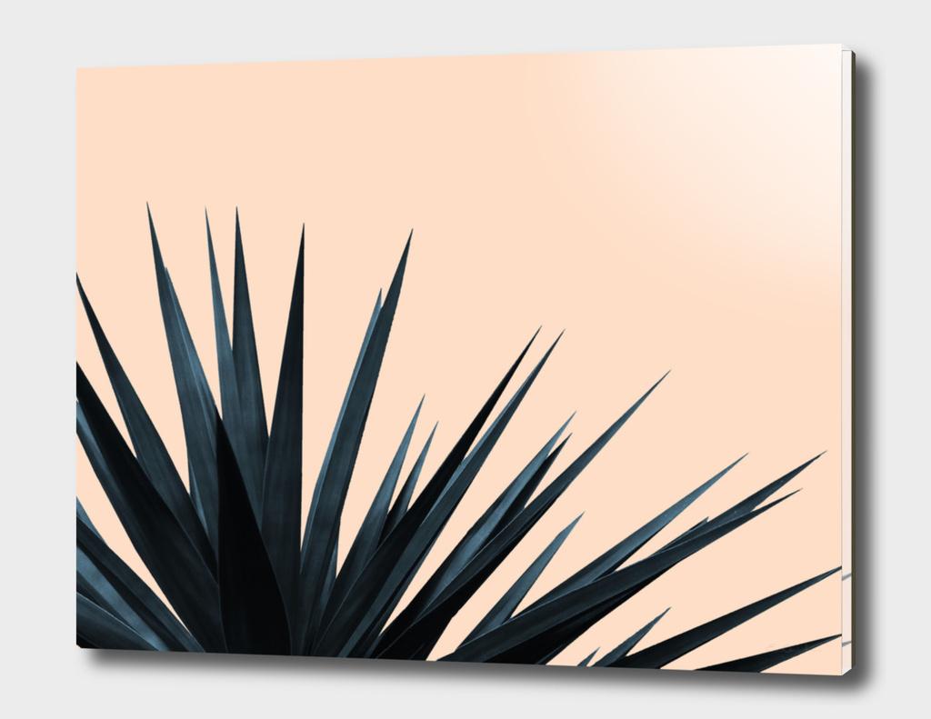 Palms on Pale Pink