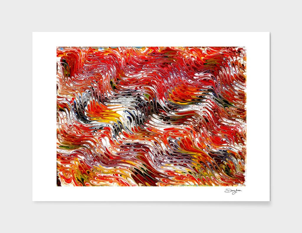 Fall Colour Delight
