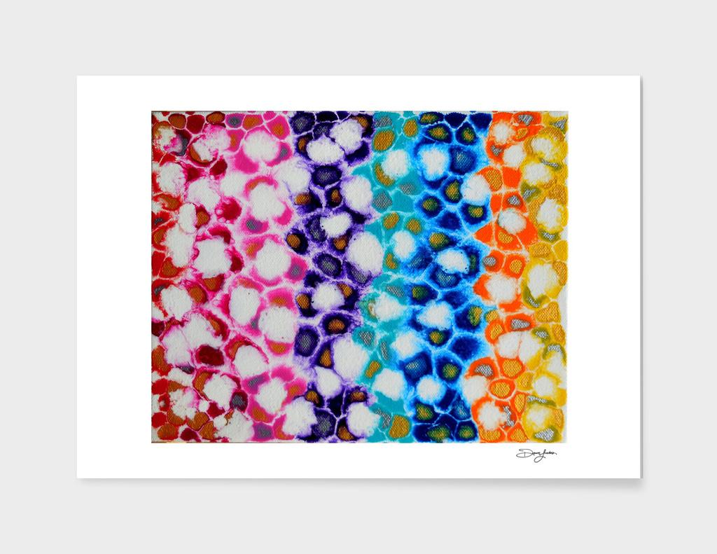 Rainbowish Blend
