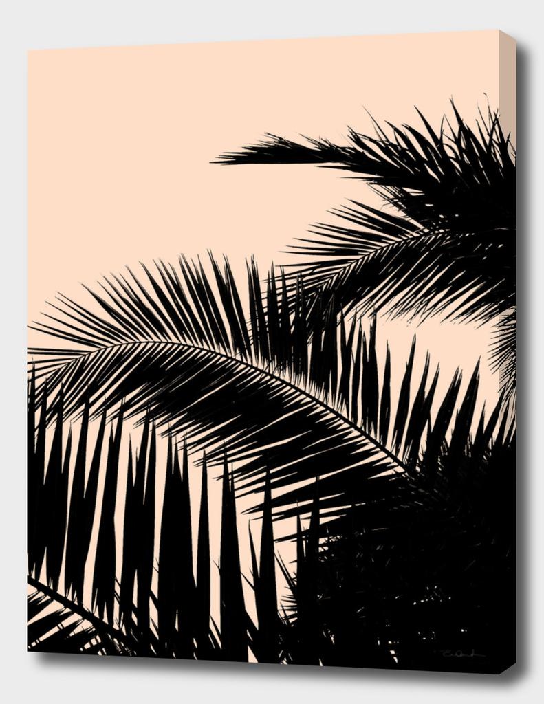 Palms Spring