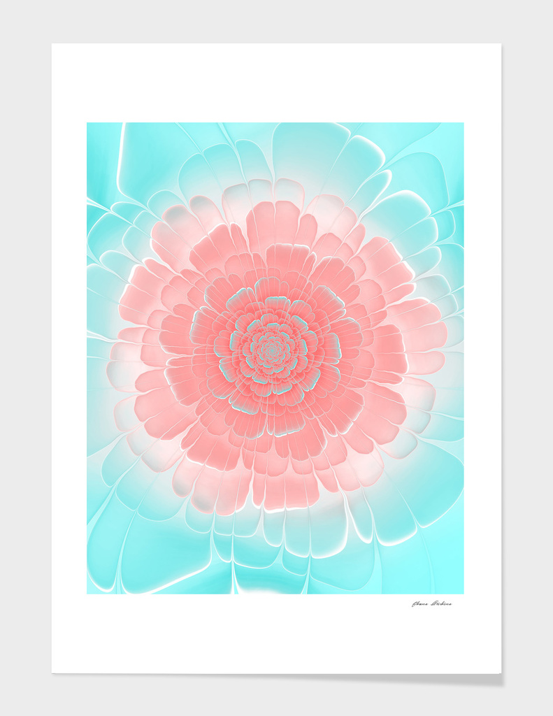 Romantic Peach Flower