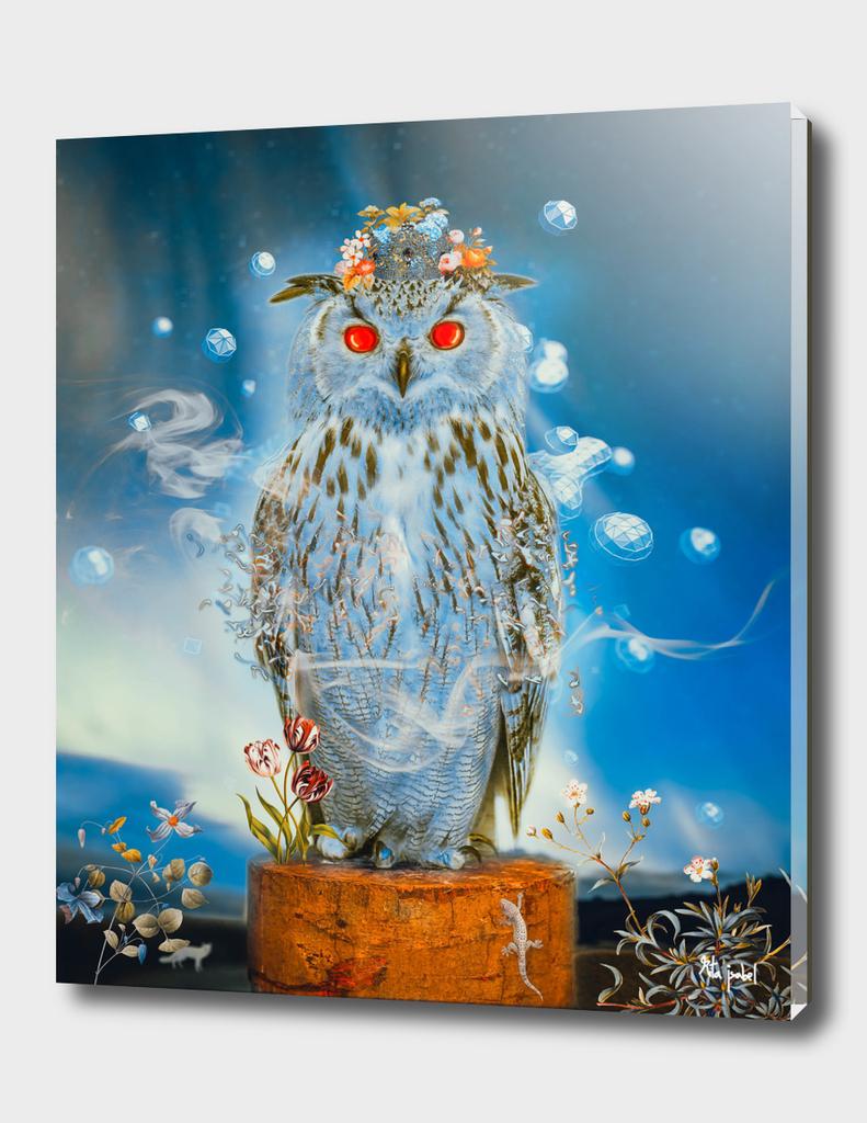 Sapphire Owl .Lighter.