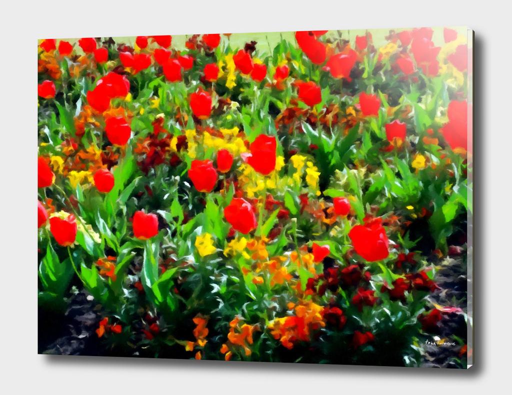 Tulips at Hampton Court Gardens