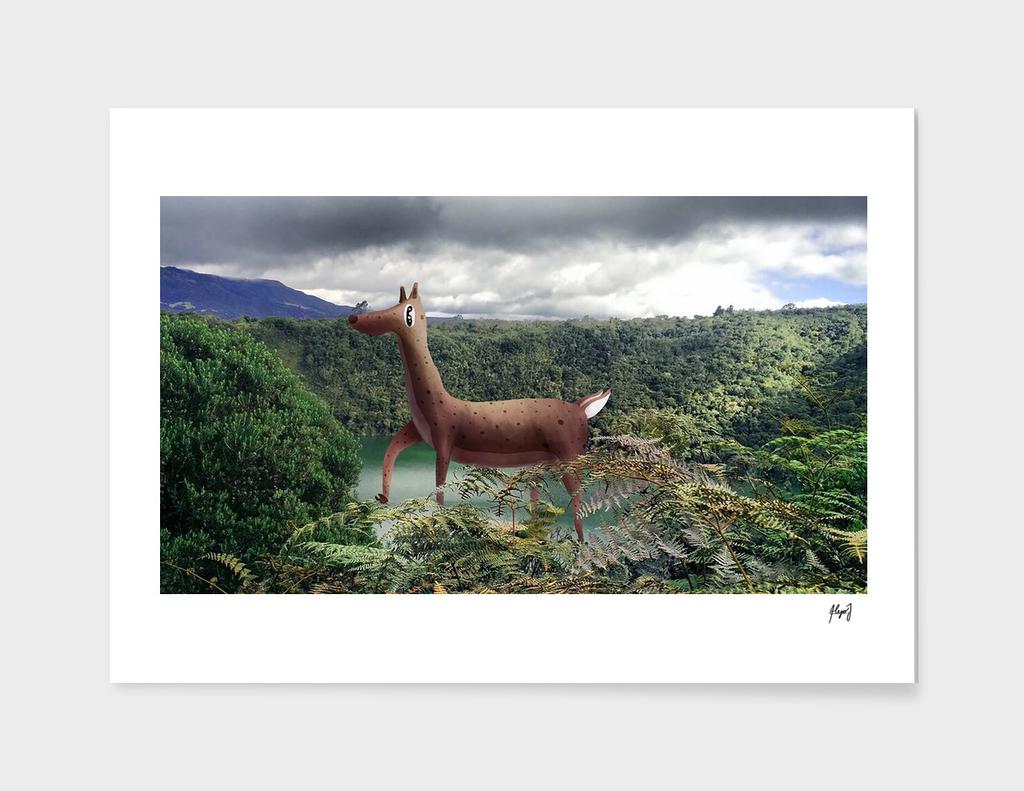 Deer in Guatavita