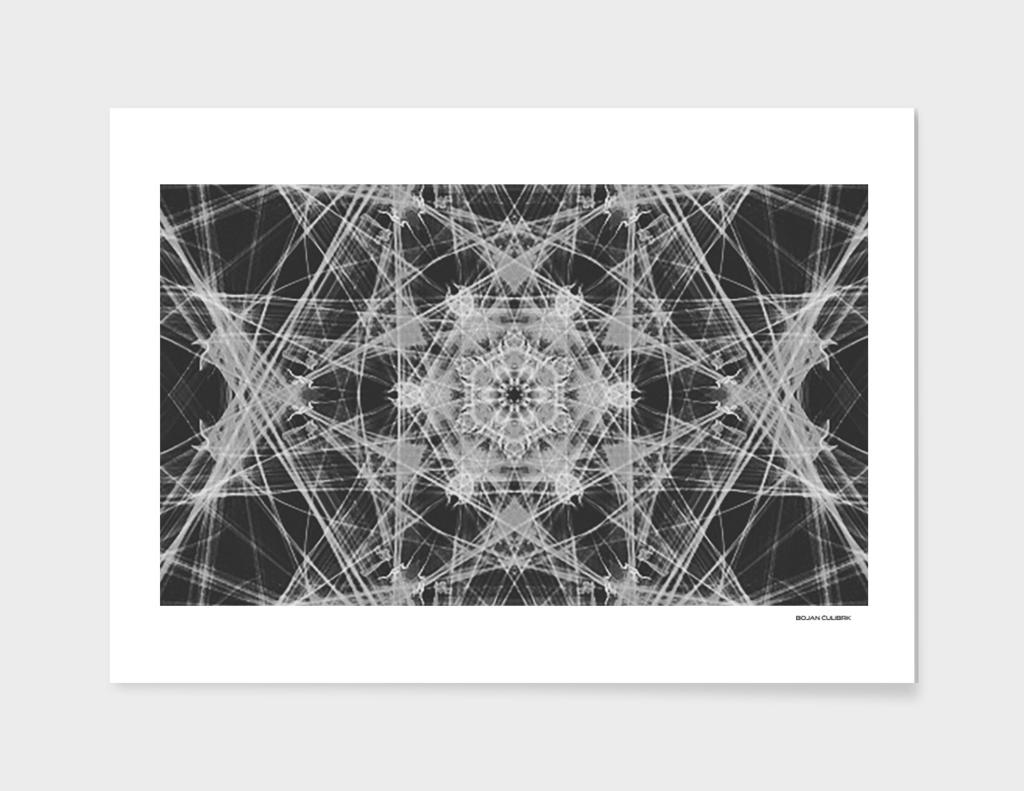Silk Art (219) bw