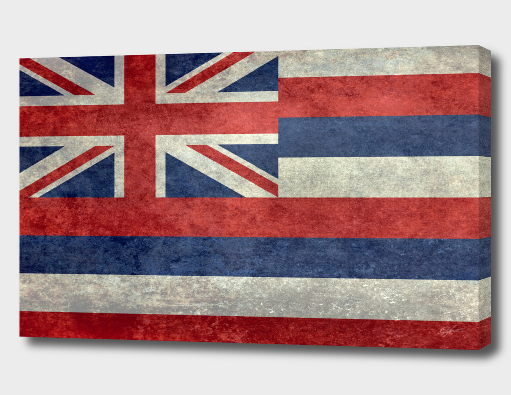 Hawaii state flag Vintage retro style