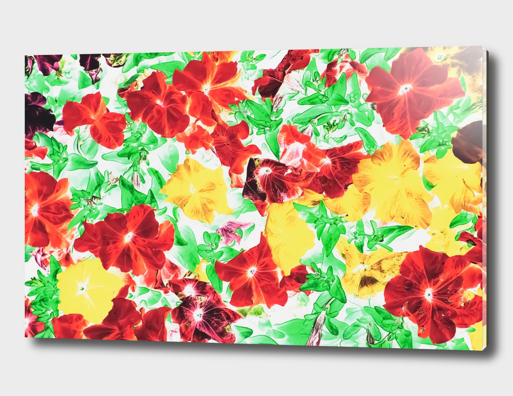 red flower and yellow flower with green leaf