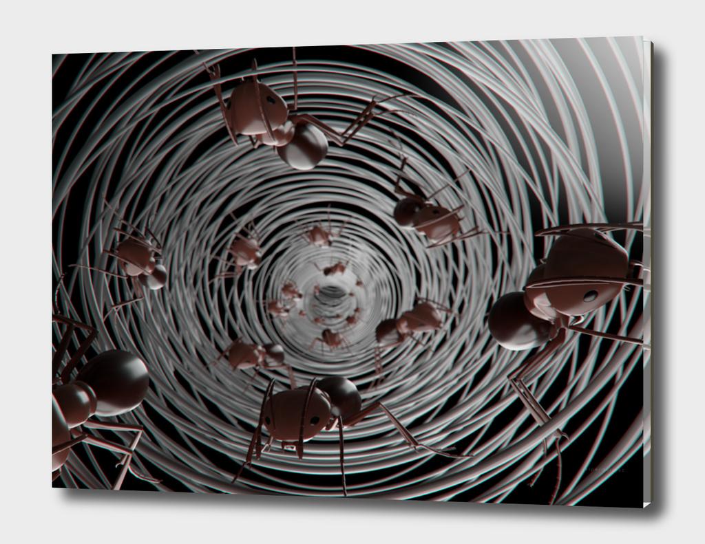 ants dark