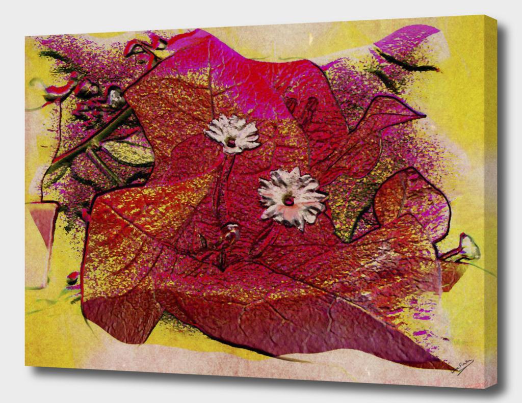 Red Bougainvillea Abstract Deekflo
