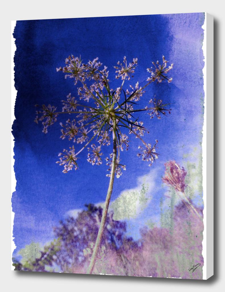 Lacey Sky Lavender Deekflo