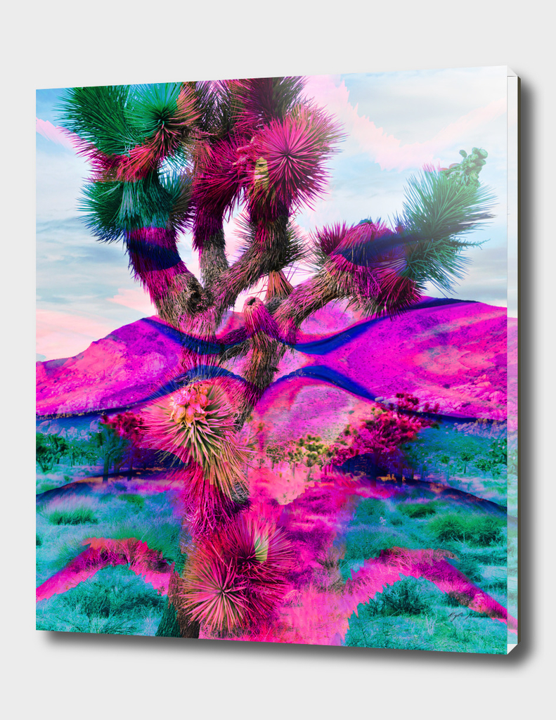 Joshua Tree Art