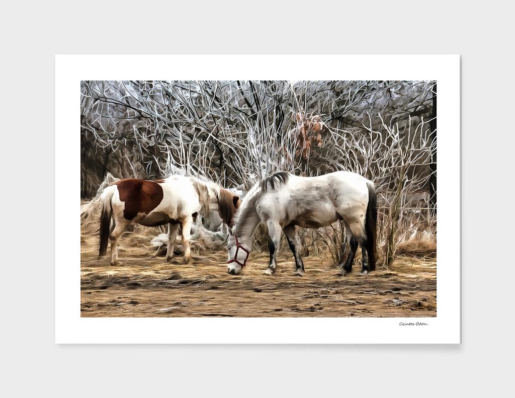 Legging horses