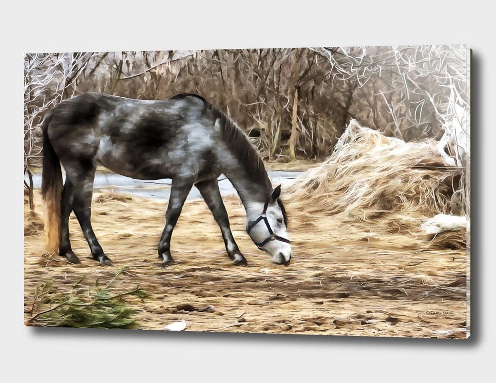 Legged horse
