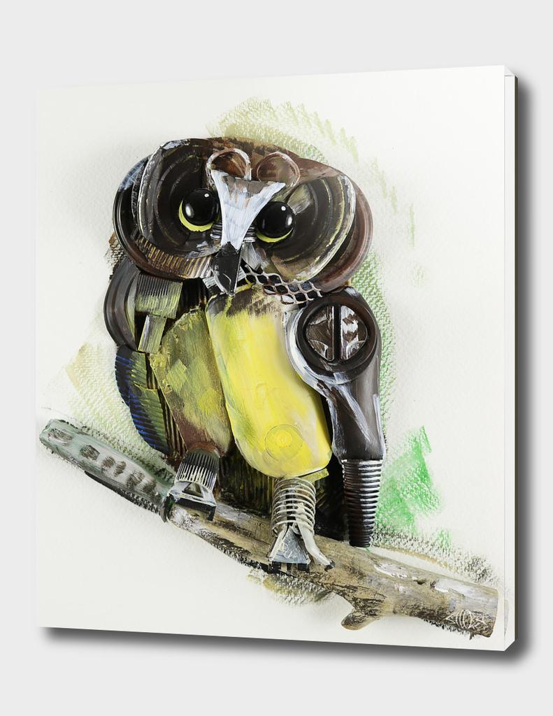 3D Owlet