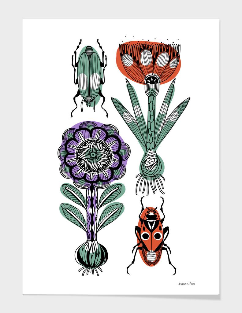 bulbs&beetles