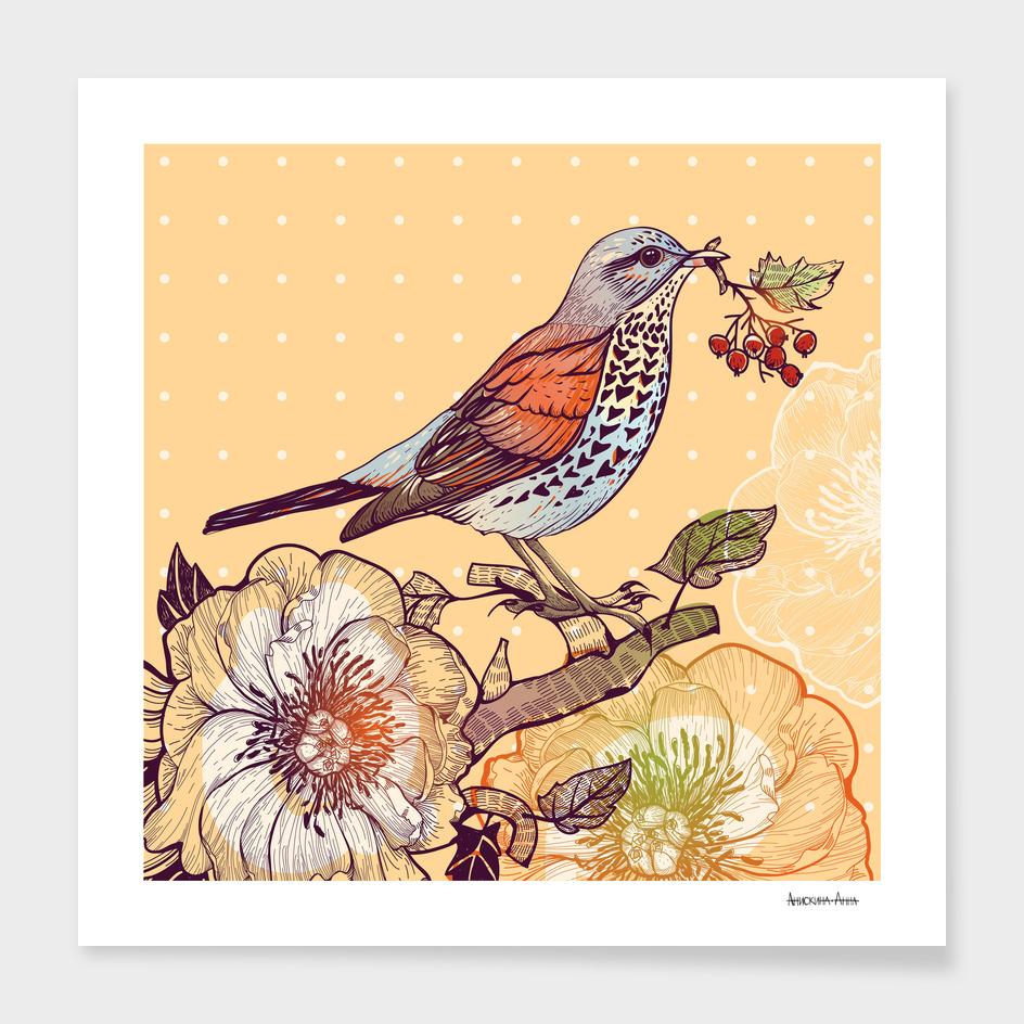 Bird with berries