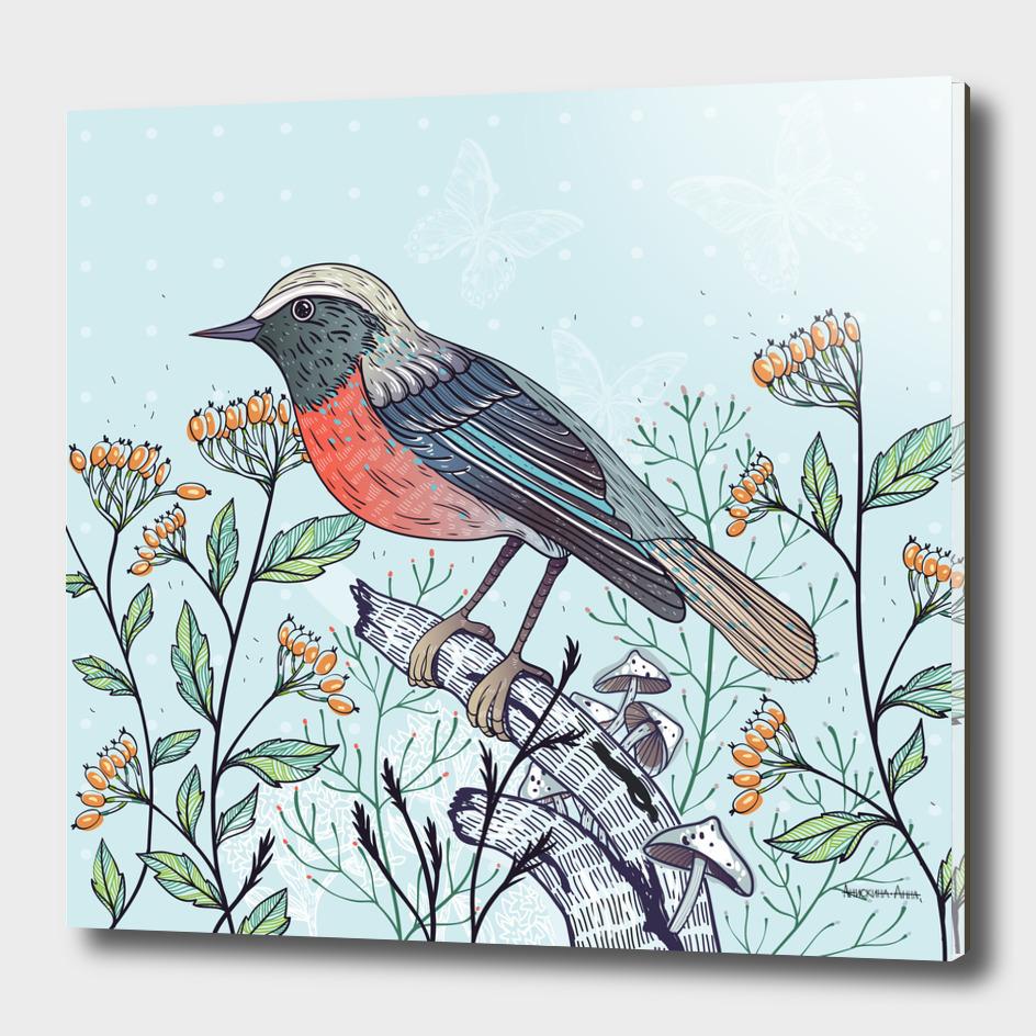 Bird&berries