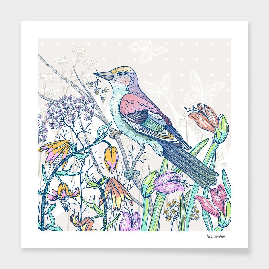 Bird&buds