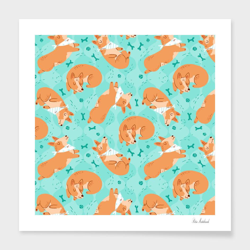 Corgi Dog Pattern