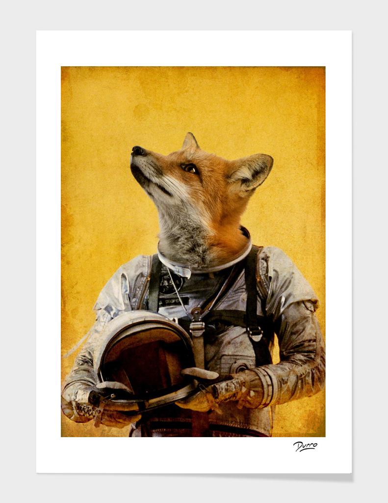Space fox