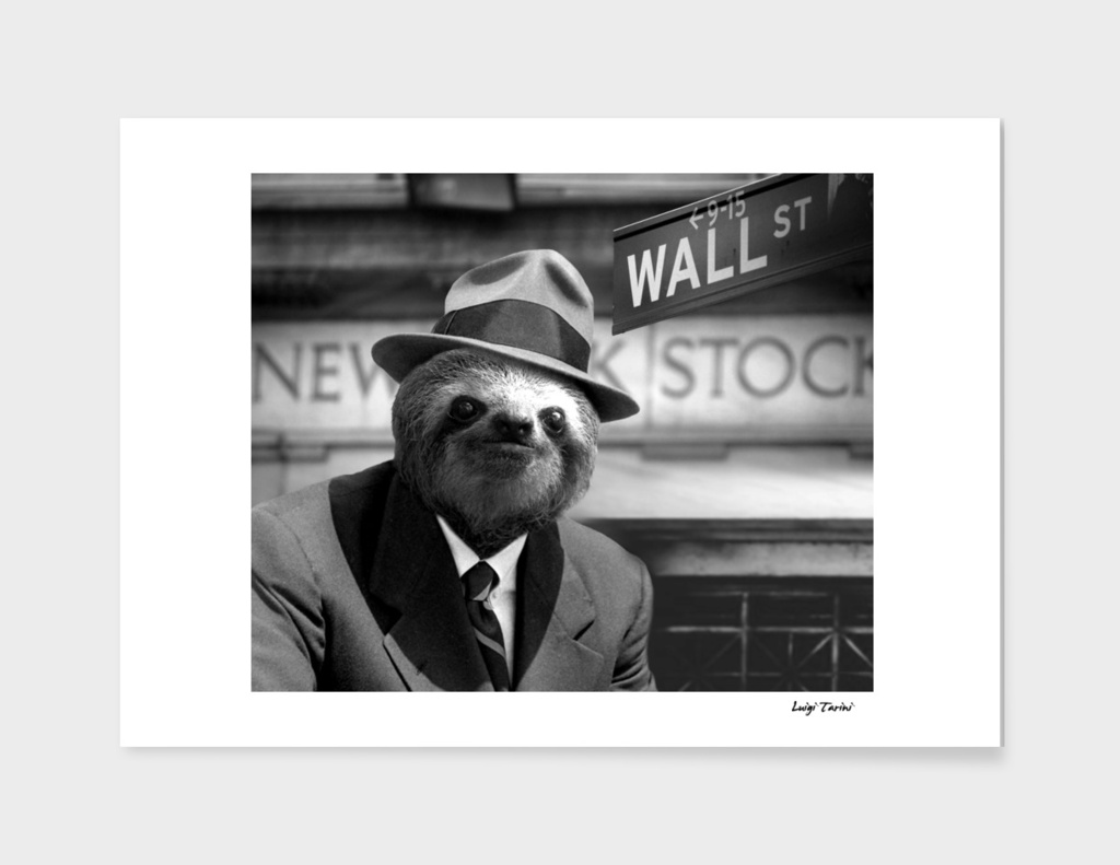 A Sloth in Wall Street