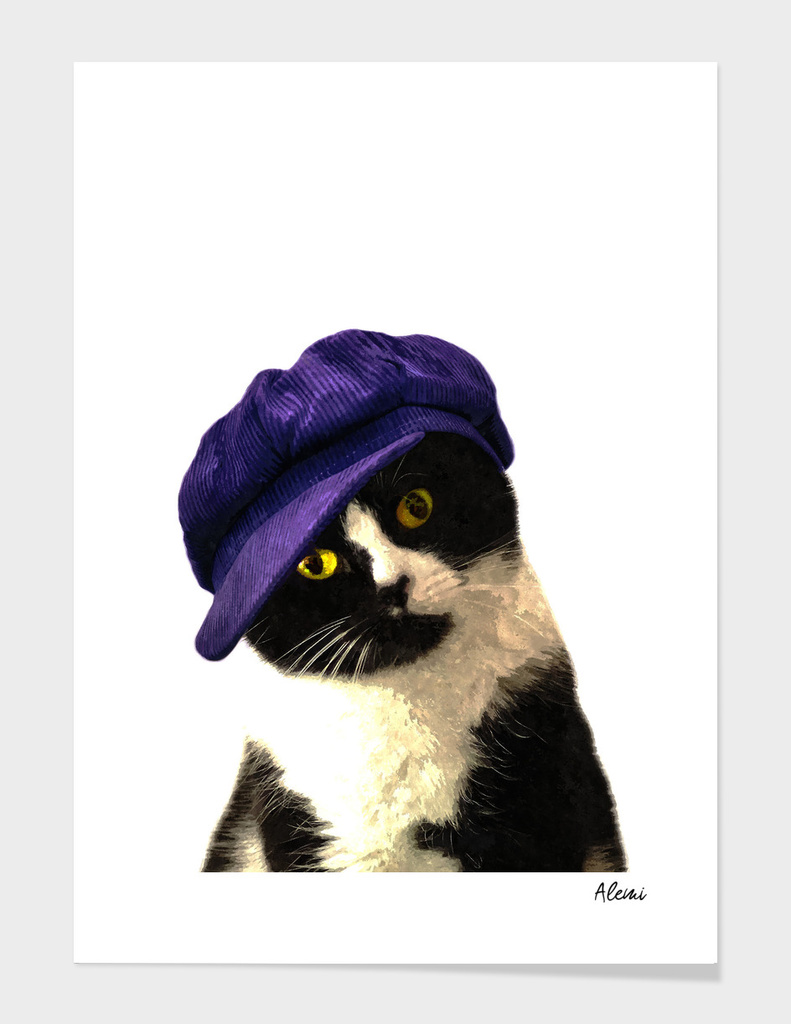 Cat Blue Hat Portrait
