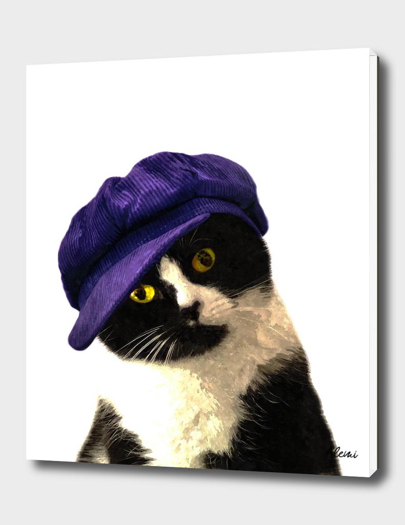 Cat Blue Hat Portrait