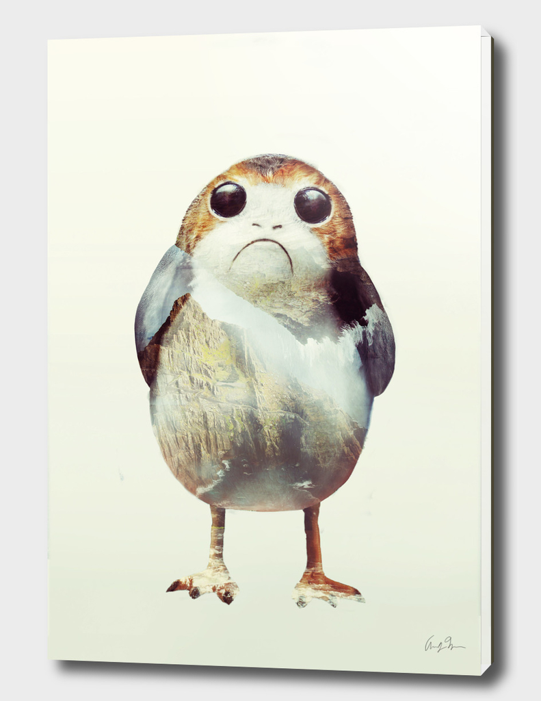 Porg on Ahch-To
