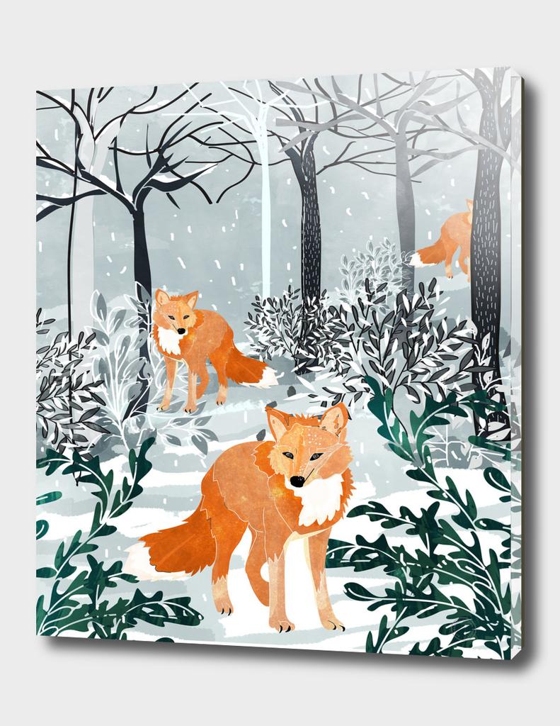 Fox Snow Walk