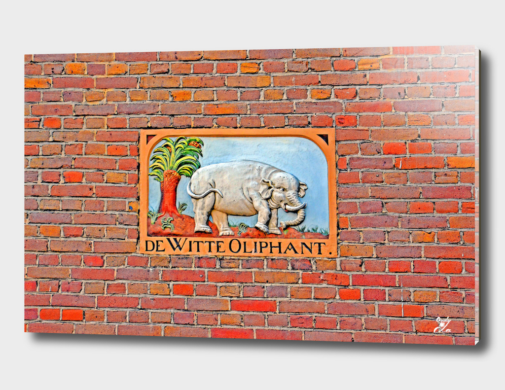 White Elephant. Street Art.